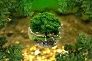 Ochrana zdrojů, strom